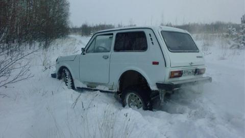 Расследование избиения егеря в Саратовской области завершается