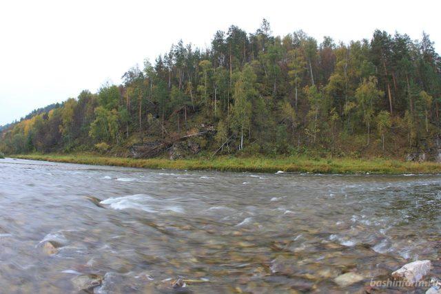 В Башкирии обсудили развитие рыбоводства в заповеднике