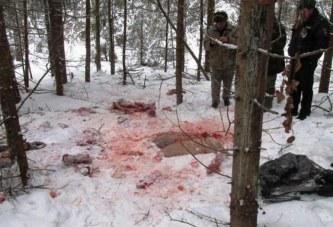 Трех браконьеров из столицы поймали с поличным смоленские полицейские