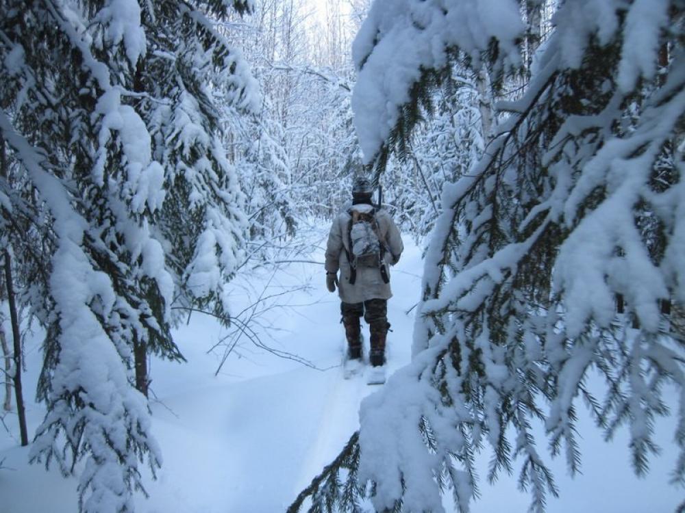 Новогодние каникулы в Башкирии: итоги надзорной деятельности в сфере охоты