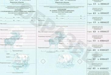 В Кирове принят закон о случайной выдаче разрешений на охоту