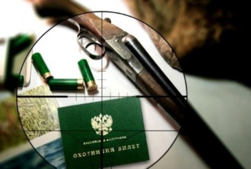 Установлены сроки весенней охоты 2017 в Тульской области