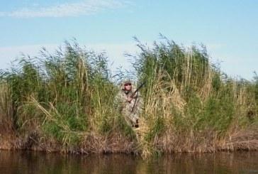 Новые сроки весенней охоты 2017 в Курганской области