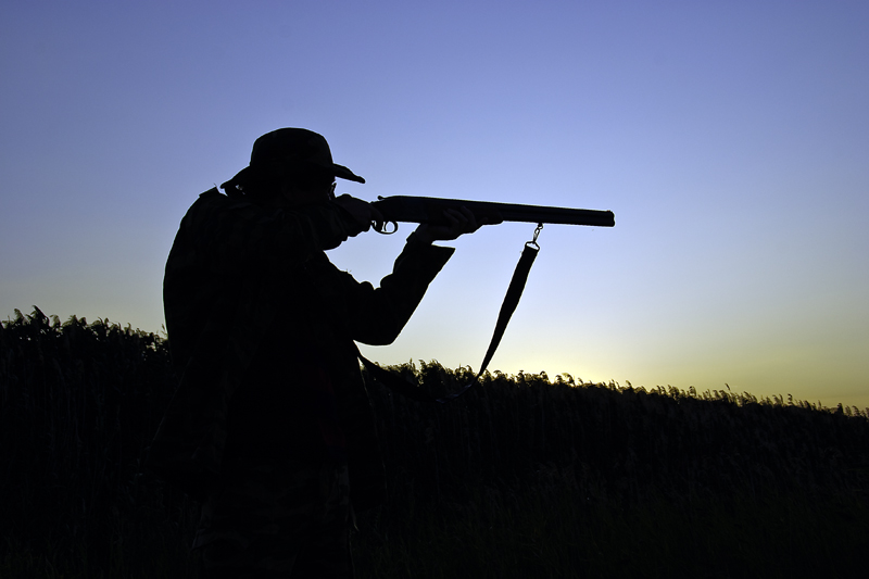 Установлены сроки весенней охоты 2017 в Ленинградской области