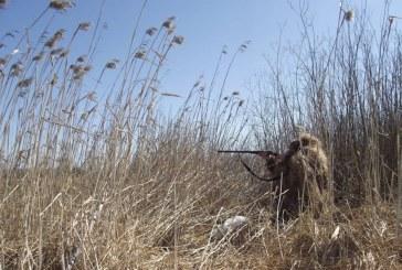 Предварительные сроки открытия весенней охоты 2017 в Оренбуржье
