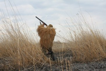 Сроки весенней охоты 2017 в Нижегородской области