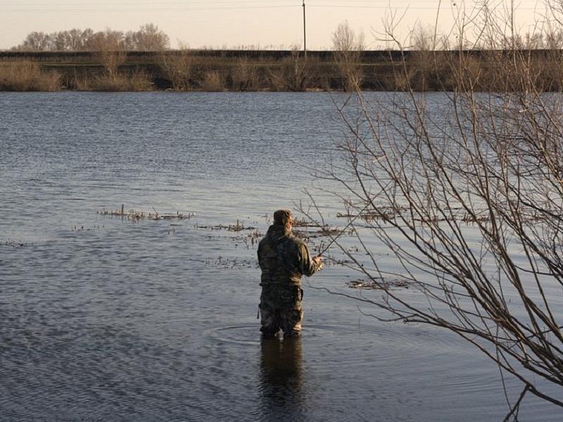 московская рыболовный запрет