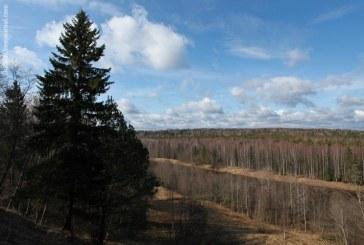 Весенняя охота 2017 в Тверской области