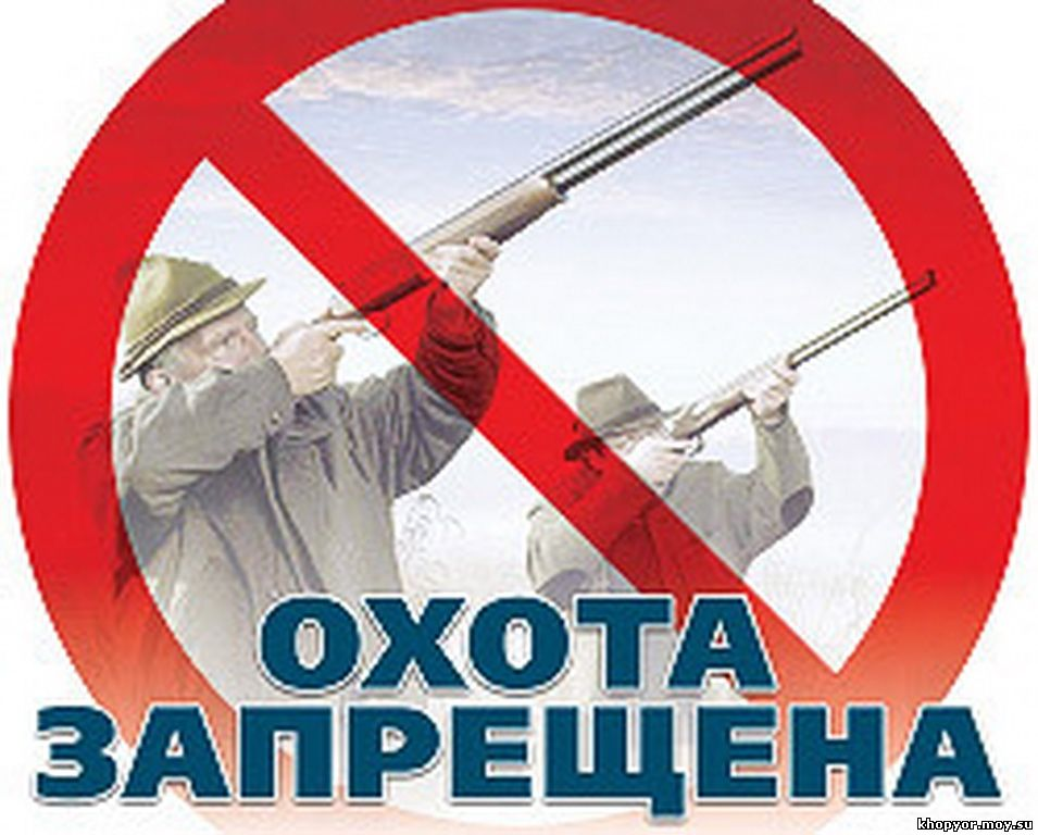 В Башкирии ограничили охоту на зайцев