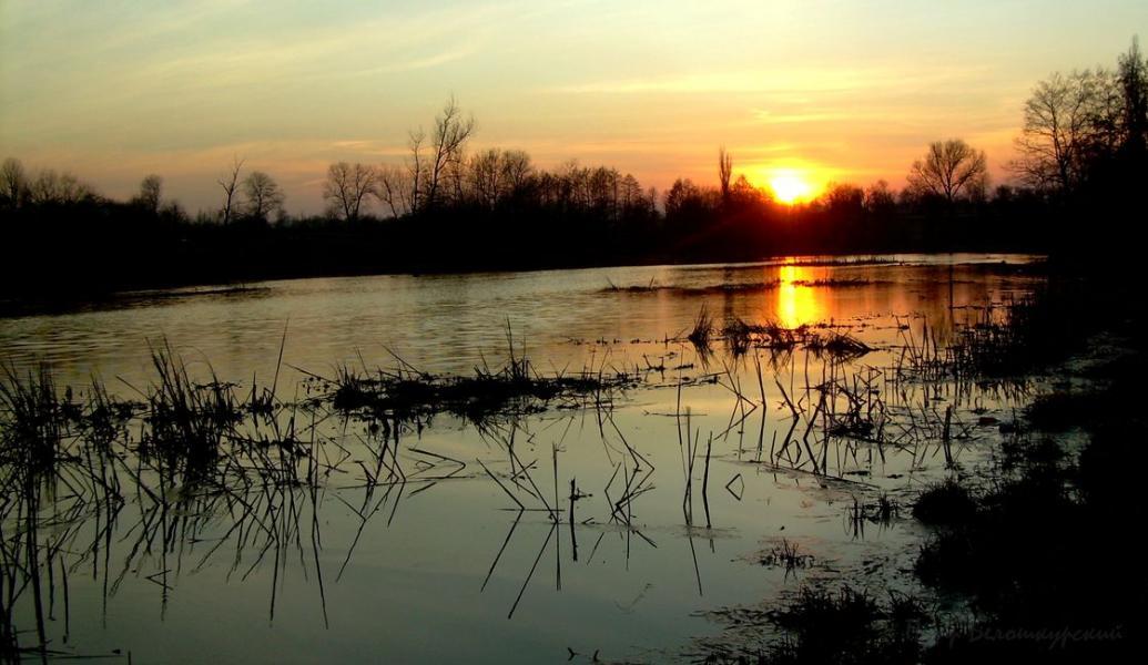 Весенняя охота 2017 в Рязанской области