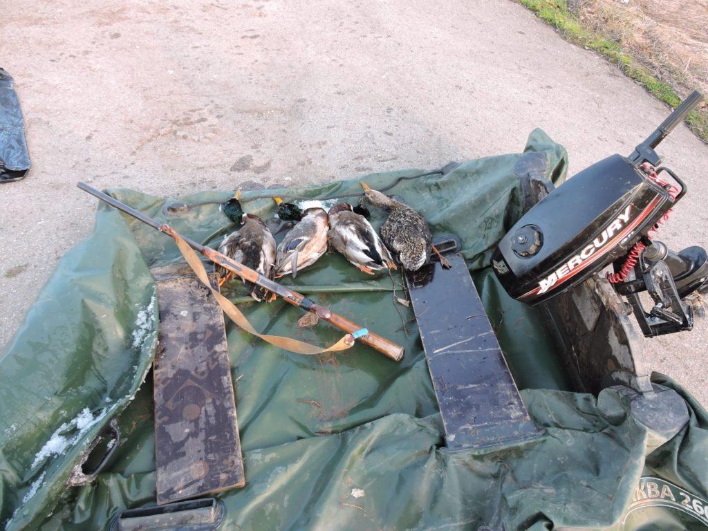 Незаконная охота с моторной лодки в Чувашии