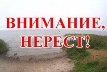 Нерестовый запрет 2017 в Ярославской области