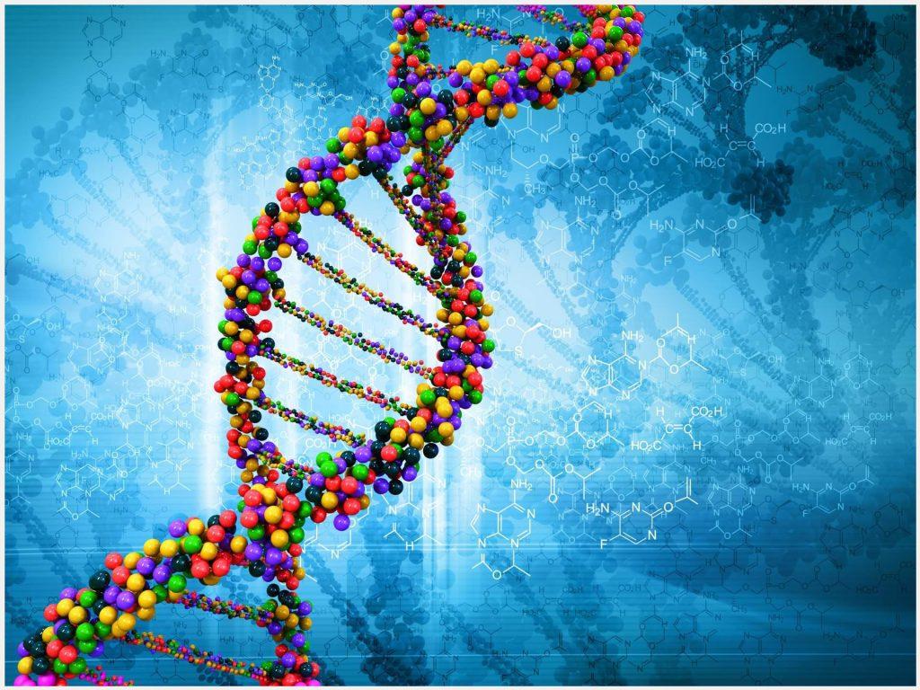 Анализ ДНК помог осудить браконьера