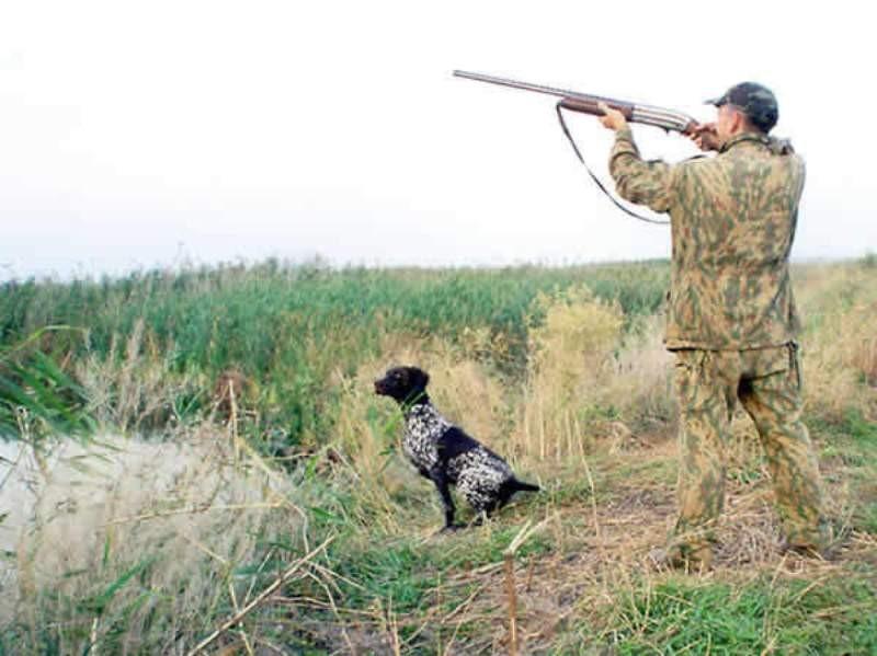 Осенняя охота 2017 в Омской Губернии