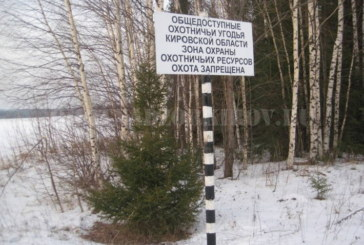 В Кировских заказниках установили аншлаги о запрете охоты
