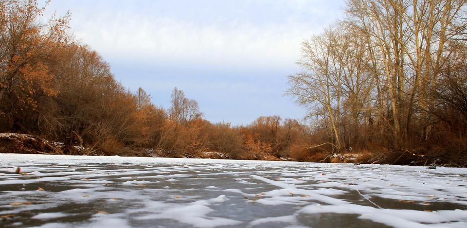 Весенняя охота 2018: Воронеж изменил сроки из-за аномальной погоды