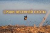 Весенняя охота 2018: В Костроме утвердили сроки