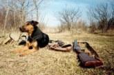В Тамбовской области установили сроки весенней охоты 2019