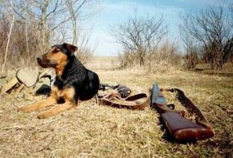 Весенняя охота 2018: В Забайкалье установлены сроки сезона