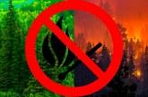В Хакасии не будет весенней охоты