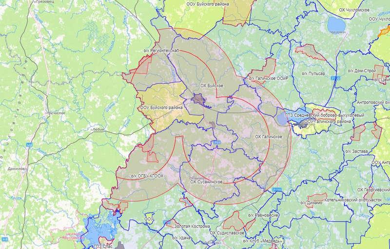 В связи с обнаружением АЧС в Костромской области введен временный запрет охоты
